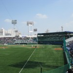 Samsung Lions Game
