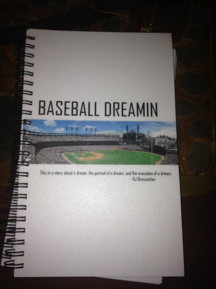 Interview: Robert Breisacher from Baseball Dreamin